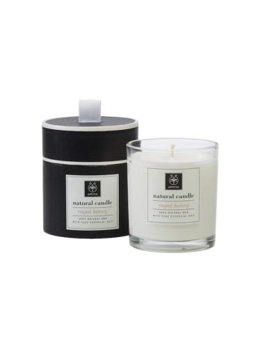 Apivita Φυσικό Αρωματικό Κερί Royal Honey 235g - 5201279060275