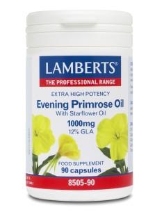 Lamberts Evening Primrose...